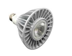 24 watt Par 38 LED bulb